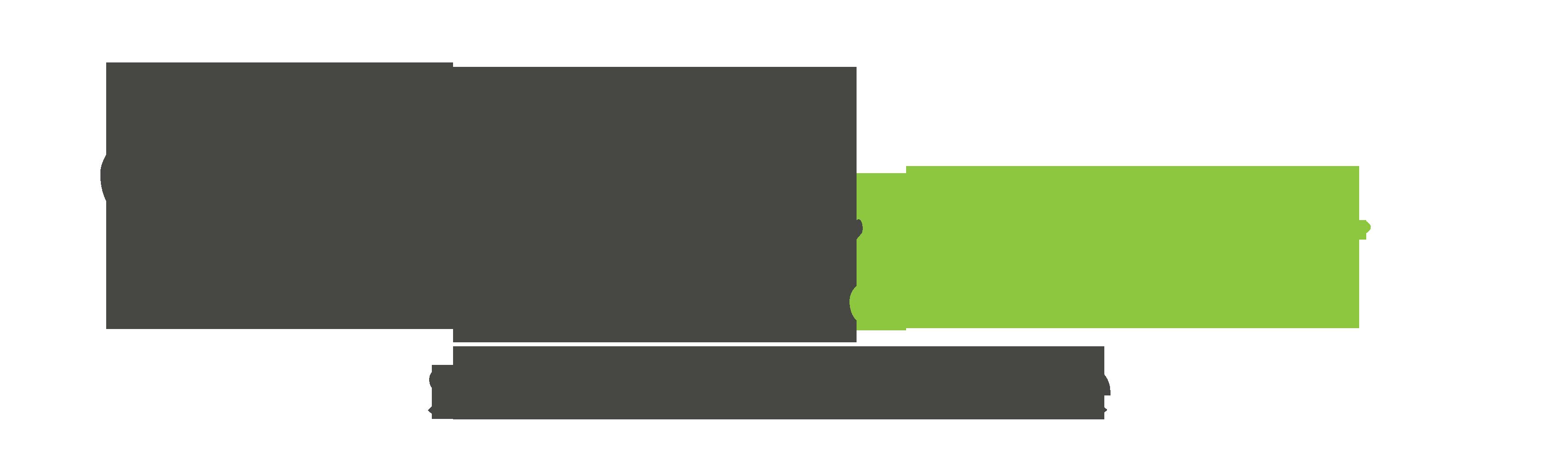 Websee Web Agency
